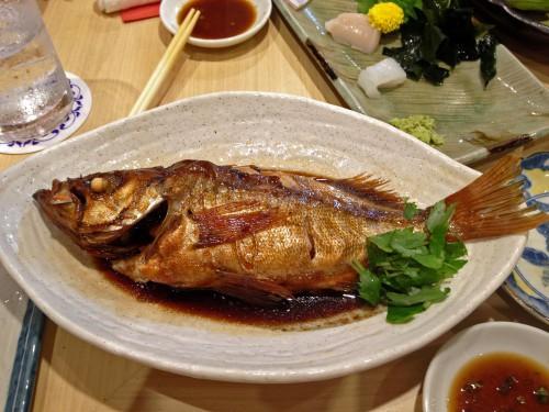 ブログNo69 お魚パワー!