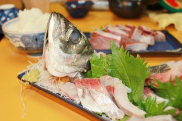 旬の魚を食べて健康に!