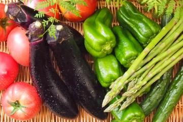 夏野菜の力!
